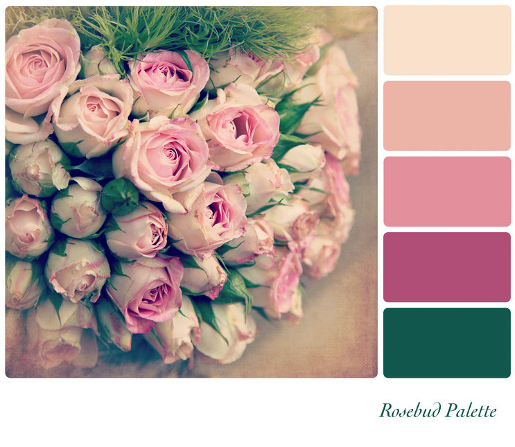Rosebud color palette