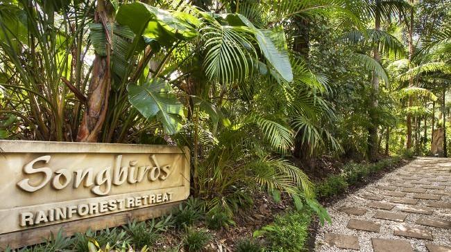 Songbirds Rainforest Retreat, Mount Tamborine