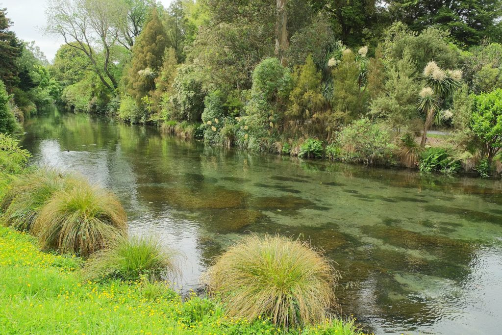 Avon River in Christchurch Botanic Gardens
