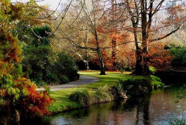 Christchurch Botanic Garden