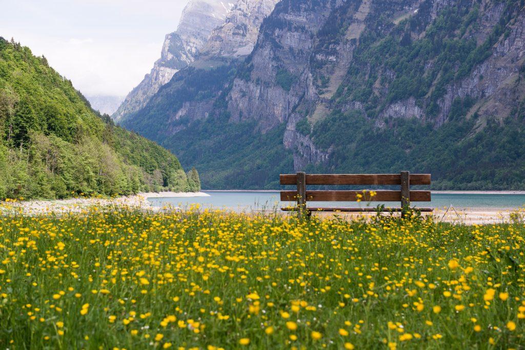 lake geneva bench flowers