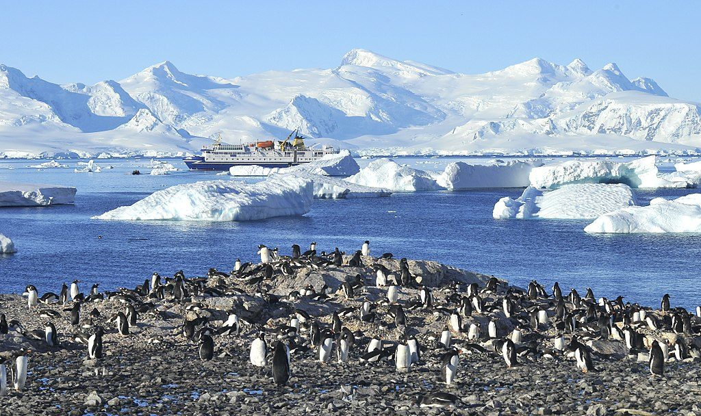 Penguins on Cuverville Island off Antarctica Coast