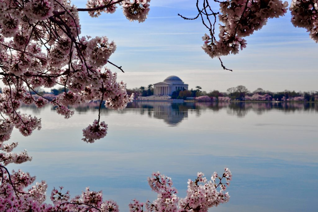 Jefferson Memorial, Tidal Basin, Washington, DC