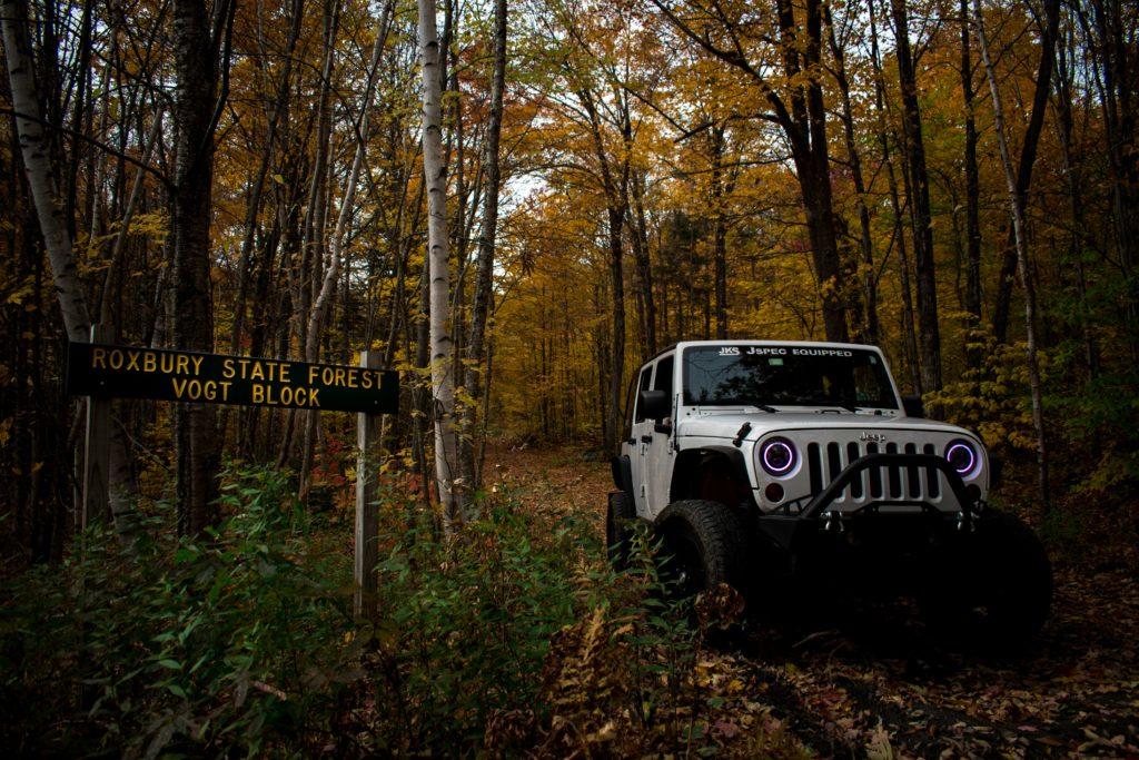 Roxbury State Forest, Northfield, Vermont