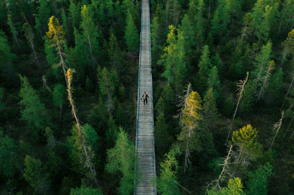Lost Trail, Lake Carmi, Vermont